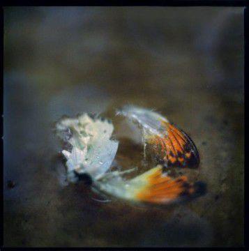 "Anna Clarén - ""Under"""