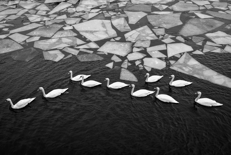 © Anders Onerup Titel: Stockholms ström Bildmått: 27x40 cm Teknik: Arkivbeständig pigmentprint Montering: Träram med passepartout 40x50 cm Upplaga: 30  Signerad: Ja Pris SEK 3 500