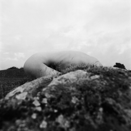 © wa-Mari Johansson Titel: Hide , ur serien Tree of Life Plats/Datum: Sweden Torsö   /fotograferat 2006/ bild kopierad 2009 till första utställningen Bildmått: 47,5 x47,5 cm  Träram med passpartout 63,5x62,5 cm Teknik: Analogt fotografi Vintage Silvergelatin print Upplaga: 3 +1AP i två storlekar  Pris: SEK 29 000