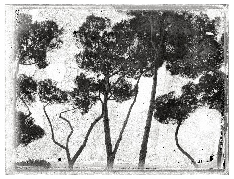 © Maria Fäldt  Titel: Analogue I  Plats/datum: Rom 2013 Bildmått:  30x40 cm/pappersmått 40x50 cm Teknik: Arkivbeständig pigmentbläckutskrift,  Montering: Träram med distans 40x50 cm Upplaga: 15 + 2 A.P. Signerad: Ja Pris: SEK 4 200 (Oinramad bild SEK 3900)