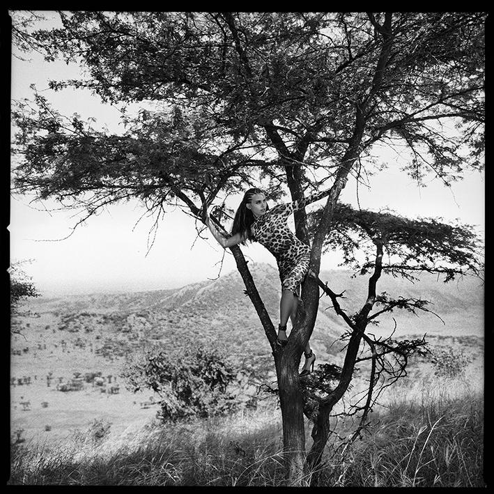 © Ewa-Mari Johansson Titel: Leopard   Serie: Haute Couture på Safari  Plats/ Datum: Queen Elisabeth National Park Uganda/ 2002 Bild mått: 47x46,5 cm Träram med passpartout:63x62 cm Teknik: Analogt fotografi  Arkivbeständigt pigmentbläckutskrift    Upplaga: 3 + 1AP i 3 storlekar Pris: SEK 13 000