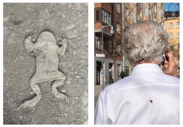 © Linda Forsell Titel: Untitled, Stockholm 2017 Bildmått: 2 x 20x14 cm diptyk Teknik: Arkivbeständig pigmentbläckutskrift Träram med passepartout: 30x40 cm Upplaga: 20  Signerad: Ja  Pris: SEK 4900