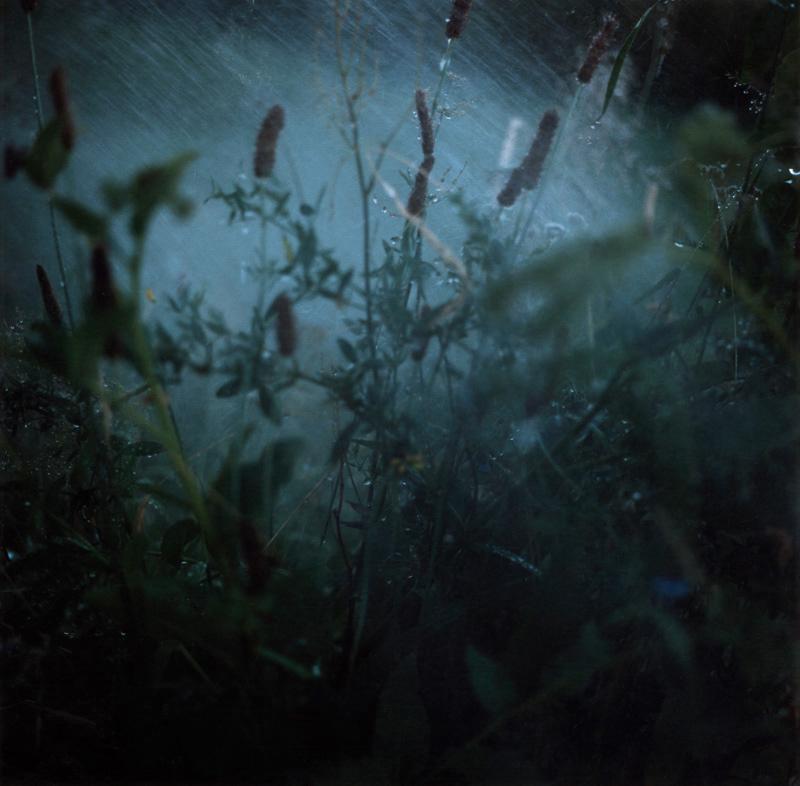 """© Anna Clarén; Titel:; Ur serien """"Holding""""; Bildmått: 60x60 cm; Teknik: Arkivbeständig pigmentbläckutskrift Montering:Montering: Vit träram med distans 60x60 cm  Upplaga: 10 Signerad: Ja; Pris: SEK 15 500"""