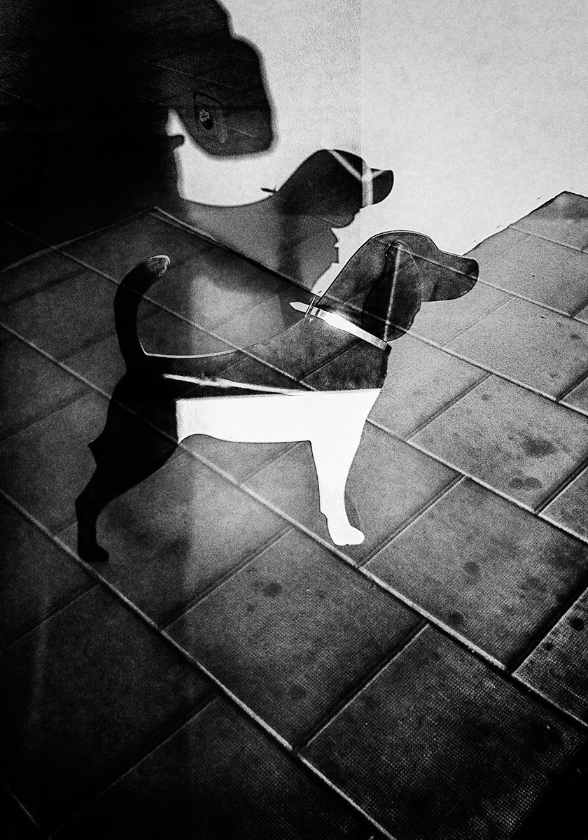 "© Jonas Berggren. Titel: ""I wanna be your dog"". Plats/Datum: Stockholm 2012. Bildmått: 21x30 cm. Teknik: Fine Art Print (pigmentbläck). Montering: Träram 30x40 cm. Upplaga: 9 + 1 AP. Signerad: Ja. Pris: 6 400 SEK. (Oinramad bild 5 400 SEK)."