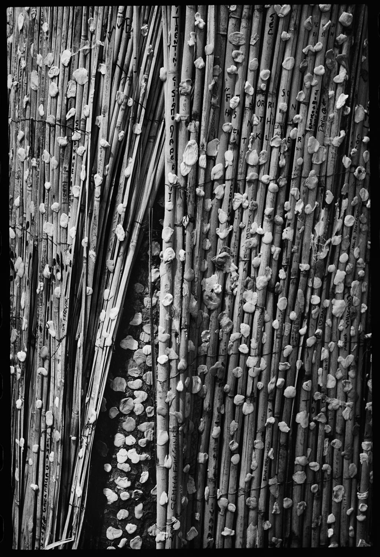 """© Knut Koivisto  Titel: """"Tuggummiträdet""""  Plats/Datum: Jim Morrisons grav, Père-Lachaise, Paris 2014  Bildmått: 18×12 cm  Teknik: Arkivbeständig pigmentbläckutskrift  Montering: Träram med distans 23×23 cm  Upplaga: 8 + 2AP Signerad: Ja Pris: SEK 3000"""