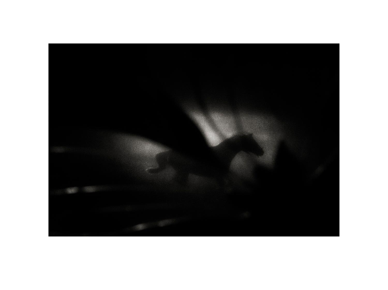 © Mats Andersson  Titel: Dark Horse  Bildmått: 30×40 cm  Teknik: Arkivbeständig pigmentbläckutskrift  Träram med passepartout 40×50 cm  Upplaga: 10 Signerad: Ja Pris SEK 8 900