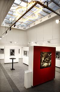 Många av våra utställningar lämpar sig väl för studiebesök ifrån skolor och institutioner.