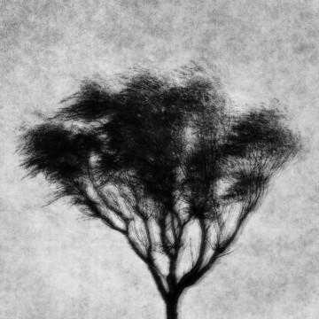 Jonas Berggren Titel: Utan titel Plats/Datum: Abbekås, 2015 Bildmått: 15,5x15,5 cm Teknik: Fine Art Print (pigmentbläck) Montering: Vit träram 30x30 cm Upplaga: 1/9 + 2 AP Signerad: Ja Pris: 3 900 SEK