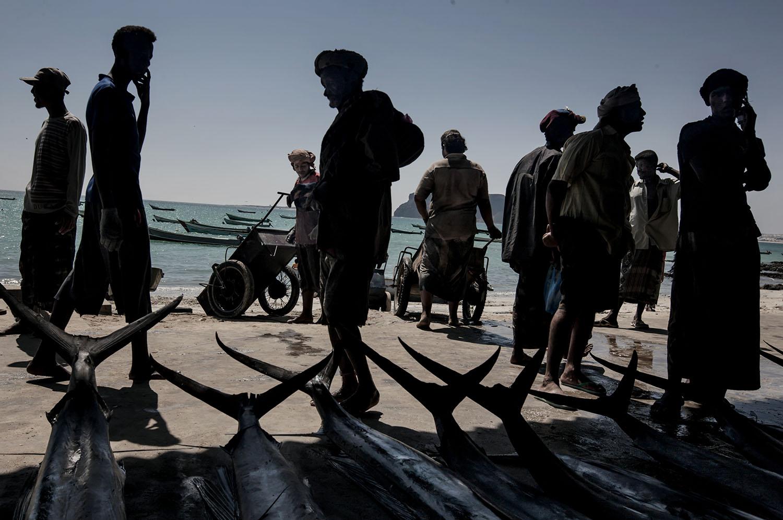 © Paul Hansen Titel: Fish market, in Al Qaeda territory Plats/Datum: Jemen, Bir Ali, 2008  Bildmått: 40x60 cm (pappersstorlek 50x70 cm)  Teknik: Arkivbeständig pigmentbläckutskrift  Träram med passepartout  50x70 cm  Upplaga: 20 Signerad: Ja  Pris: SEK 5000