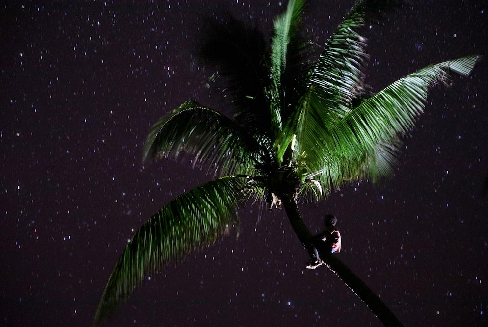 © Niclas Hammarström Titel: Ratu på Han Island Plats/datum: Papaua, Nya Guinea 2019 Bildmått: 40x60 cm Teknik: Digital c-print Montering: Träram med passepartout 50x70 cm. Upplaga: 15  Signerad: Ja Pris: SEK 8 500