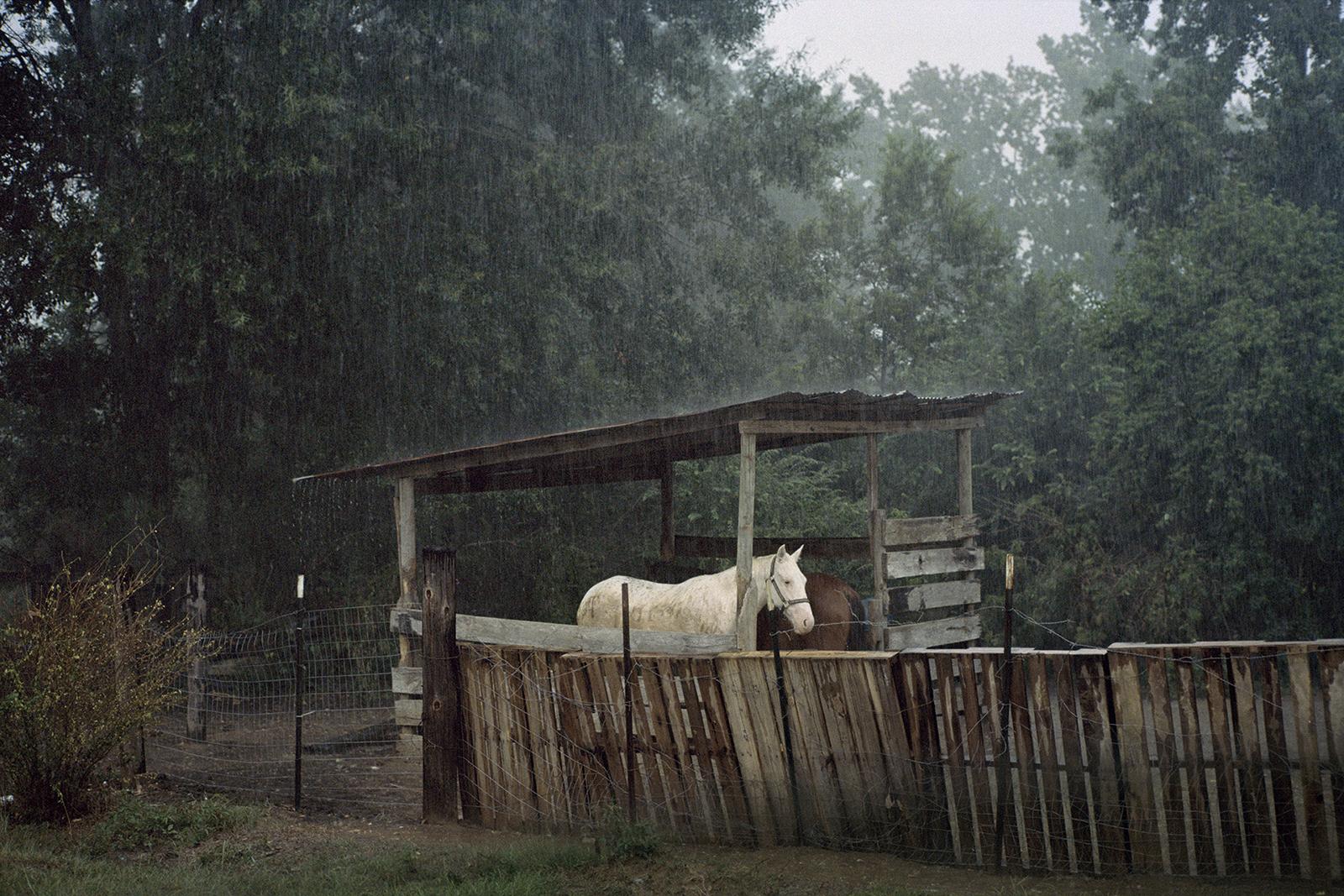 70 Hannah Modigh. Ur serien Hurricane Season 2012. Bildmått: 40×60 cm / Inramad 50×70 cm.Arkivbeständig pigmentbläckutskrift. Edition 3/6. Signerad.  Pris: SEK 13 000