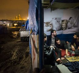 "Nora Lorek - ""European Jungle och Milaya - Patterns of Home"""