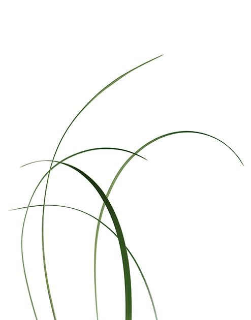 © DAWID (Björn Dawidsson) Titel: För SAAB 2010 Bildmått: 50x60 cm Teknik: Arkivbeständig pigmentbläckutskrift  Montering: Specialgjord plexibox 50x60 cm Signerad AP print,  Pris: SEK 14 500