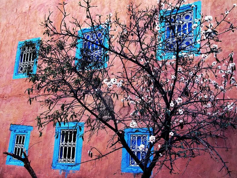 © Josef Friedinger Plats/Datum: Marocko  2012  Bildmått: 30x40 cm  Teknik: Digital c-print Montering: Svart trärm med passepartout 40x50 cm  cm, Upplaga: 15 (#6/15)  Signerad: Ja Pris: SEK 3 900