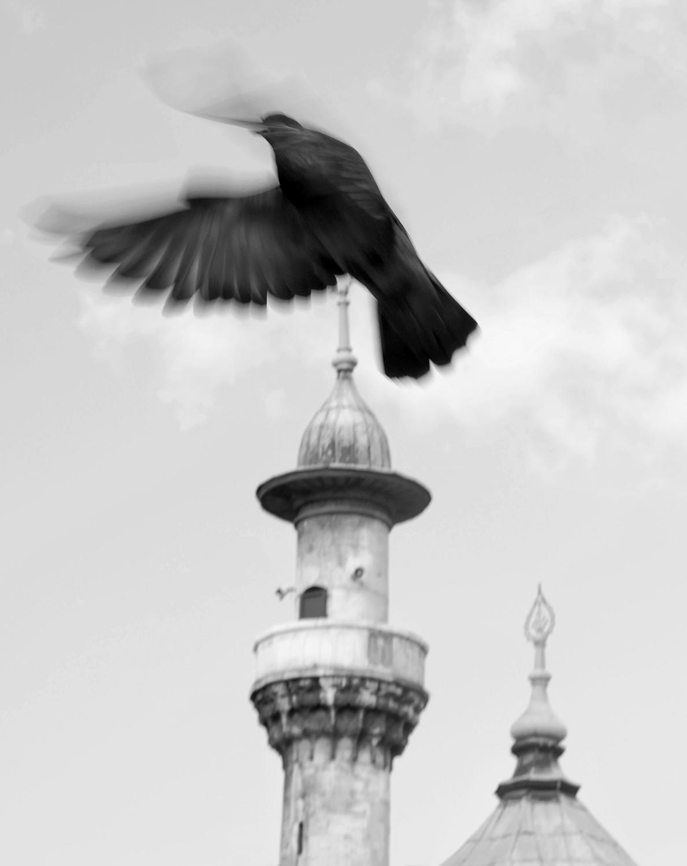 © Anders Onerup    Titel:     Plats/Datum: Istanbul 2014    Bildmått: 36x46 cm cm  Teknik: Arkivbeständig pigmentbläckutskrift Upplaga: 50  Signerad: Ja Pris: SEK 2900 (avser oinramad bild)