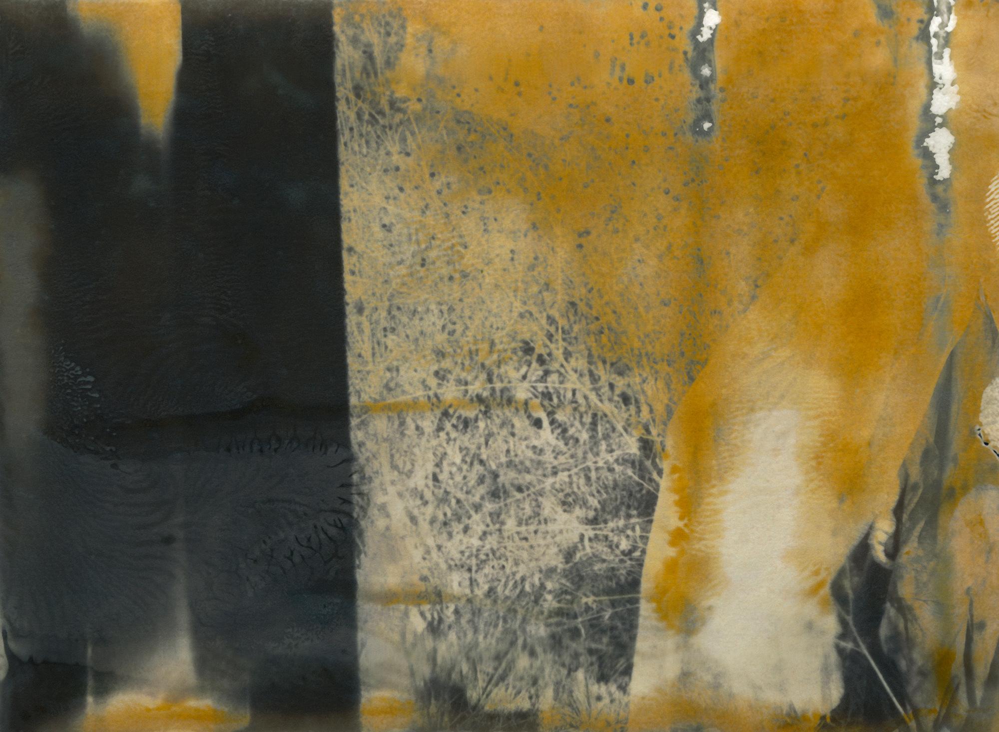 © Lisen Stibeck Titel: untitled No 1 Plats/Datum: Mexico 2019  Bildmått: 40 x 54 cm  Teknik: Polaroid / Arkivbeständig pigmentbläckutskrift  Montering: Valnötsram med artglas 40x54 cm    Upplaga: 12 + 2 AP Signerad: Ja   Pris: SEK 19 500 (oinramad bild SEK 16 000))
