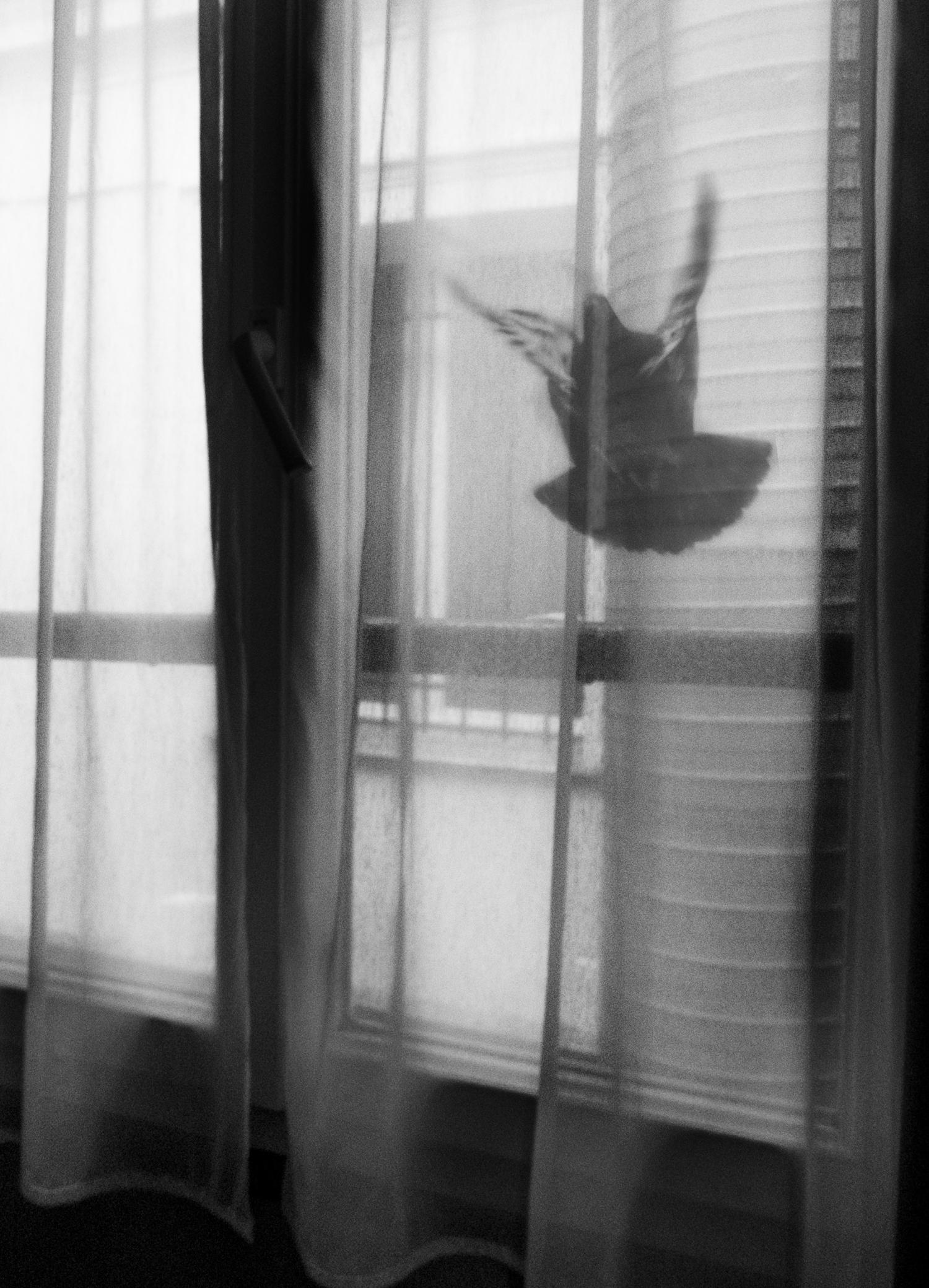 © Marcus Erixson Titel: Homage till Kenneth Plats/Datum: Paris 2015 Bildmått: 21x30 cm Teknik: Digital c-print Montering: Träram 30x40 cm Upplaga:  5  Signerad: Ja Pris: SEK  4500